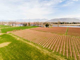 Photo 15: 41393 TAYLOR Road in Mission: Dewdney Deroche House for sale : MLS®# R2540392