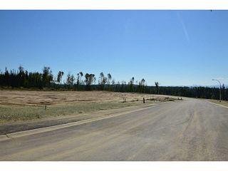 """Photo 6: LOT 19 BELL Place in Mackenzie: Mackenzie -Town Land for sale in """"BELL PLACE"""" (Mackenzie (Zone 69))  : MLS®# N227312"""
