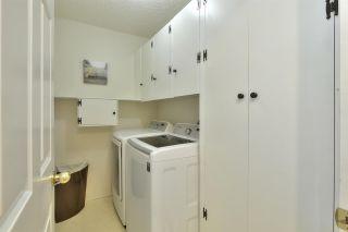 Photo 20: 11020 19 AV NW in Edmonton: Zone 16 Condo for sale : MLS®# E4207443