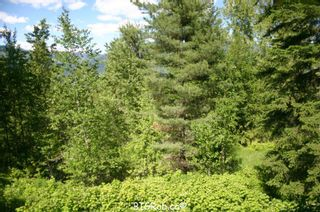 Photo 15: 4827 Goodwin Road in Eagle Bay: Vacant Land for sale : MLS®# 10116745