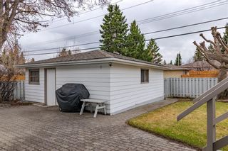Photo 41: 377 CAPRI Avenue NW in Calgary: Brentwood Detached for sale : MLS®# C4296522