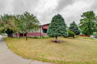 Main Photo: 2202 35 Street SE in Calgary: Southview Detached for sale : MLS®# A1140498