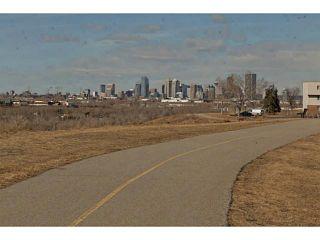 Photo 25: 724 LYSANDER Drive SE in Calgary: Lynnwood_Riverglen House for sale : MLS®# C3656384