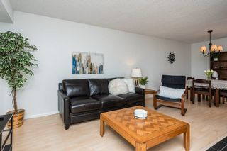 Photo 5: 2107 SADDLEBACK Road in Edmonton: Zone 16 Carriage for sale : MLS®# E4243171
