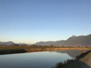 Photo 5: 8450 GIBSON ROAD in Chilliwack: Agriculture for sale : MLS®# C8037456