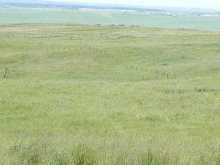 Photo 11: 112152 266 Avenue W: Rural Foothills County Residential Land for sale : MLS®# A1065931