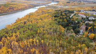 Photo 6: 17303 23 Avenue NW: Edmonton Commercial Land for sale : MLS®# A1153359