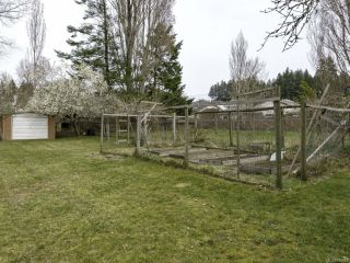Photo 30: 1446 Dogwood Ave in COMOX: CV Comox (Town of) House for sale (Comox Valley)  : MLS®# 836883