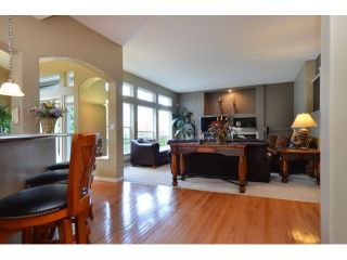Photo 13: 10351 167A ST in Surrey: Fraser Heights House for sale (North Surrey)  : MLS®# F1422176