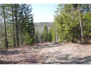 """Photo 8: 5350 SEABROOKE PIT Road in Quesnel: Quesnel - Rural North House for sale in """"TEN MILE LAKE"""" (Quesnel (Zone 28))  : MLS®# N214729"""