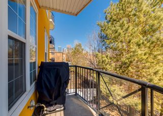 Photo 24: 205 208 Holy Cross Lane SW in Calgary: Mission Apartment for sale : MLS®# A1093875