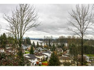 """Photo 18: 22078 CLIFF Avenue in Maple Ridge: West Central House for sale in """"WEST CENTRAL"""" : MLS®# V1103896"""