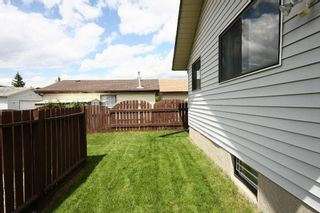 Photo 33: 27 Abalone Way NE in Calgary: Abbeydale House for sale : MLS®# C3572378