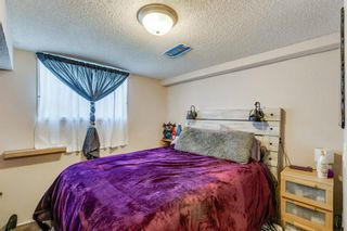 Photo 13: 168 Dover Meadow Close SE in Calgary: Dover Detached for sale : MLS®# A1082428