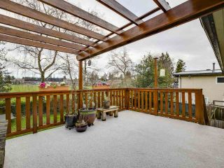 Photo 12: 4453 54A Street in Delta: Delta Manor House for sale (Ladner)  : MLS®# R2557286