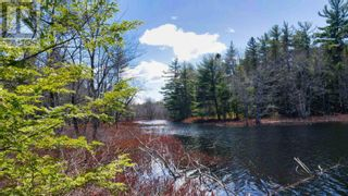 Photo 2: acreage 930 Road in Buckfield: Vacant Land for sale : MLS®# 202108244