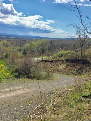 Photo 16: 808 Morden Road in Weltons Corner: 404-Kings County Vacant Land for sale (Annapolis Valley)  : MLS®# 202102895