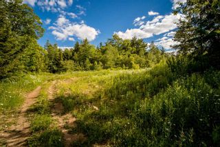 Photo 2: Lot A3 Aylesford Road in Lake Paul: 404-Kings County Vacant Land for sale (Annapolis Valley)  : MLS®# 202115391