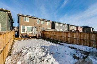 Photo 44: 209 Auburn Meadows Place SE in Calgary: Auburn Bay Semi Detached for sale : MLS®# A1072068