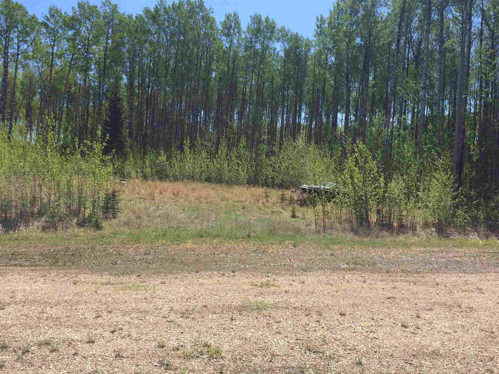 Main Photo: : Rural Lesser Slave River M.D. Rural Land/Vacant Lot for sale : MLS®# E4247783
