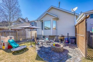Photo 31: 10 Inverness Place SE in Calgary: McKenzie Towne Detached for sale : MLS®# A1095594
