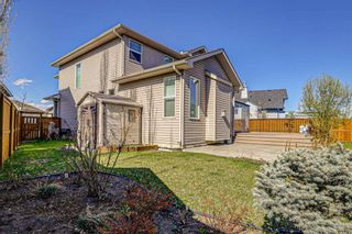 Photo 45: 26 BRIGHTONWOODS Bay SE in Calgary: New Brighton Detached for sale : MLS®# A1110362