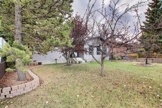 Photo 41: 1351 Idaho Street: Carstairs Detached for sale : MLS®# A1040858