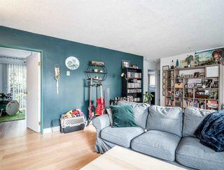 Photo 8: 21075 122 Avenue in Maple Ridge: Northwest Maple Ridge House for sale : MLS®# R2534001
