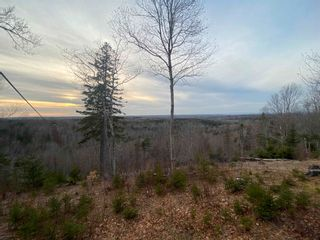 Photo 14: 380 McGraths Mountain Road in French River: 108-Rural Pictou County Residential for sale (Northern Region)  : MLS®# 202107934