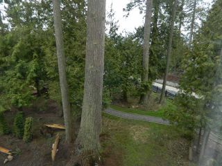 """Photo 16: 20 4967 220TH Street in Langley: Murrayville Townhouse for sale in """"WINCHESTER ESTATES"""" : MLS®# F1433815"""