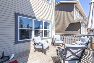 Photo 43: 100 Thornfield Close SE: Airdrie Detached for sale : MLS®# A1094943