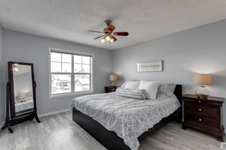 Photo 22: 400 Prestwick Circle SE in Calgary: McKenzie Towne Detached for sale : MLS®# A1070379