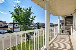 Photo 28: 311 TARALAKE Terrace NE in Calgary: Taradale Detached for sale : MLS®# A1128054