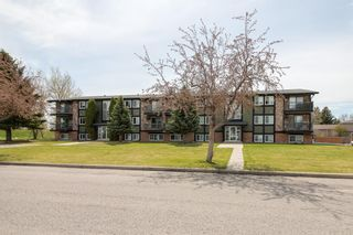 Photo 3: 102 4200 Forestry Avenue S: Lethbridge Apartment for sale : MLS®# A1096914