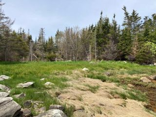 Photo 14: Lot Mushaboom Road in Mushaboom: 35-Halifax County East Vacant Land for sale (Halifax-Dartmouth)  : MLS®# 202114485