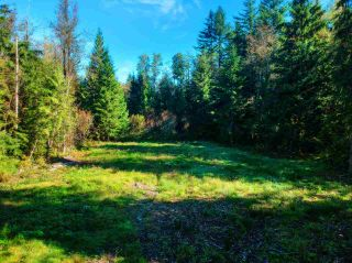 Photo 5: 30255 BRACKLEY Avenue in Mission: Stave Falls Land for sale : MLS®# R2527114