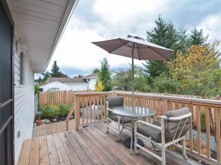Photo 36: 347 TORRENCE ROAD in COMOX: CV Comox (Town of) House for sale (Comox Valley)  : MLS®# 772724