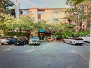 """Main Photo: 304 7291 MOFFATT Road in Richmond: Brighouse South Condo for sale in """"DORCHESTER CIRCLE"""" : MLS®# R2616320"""