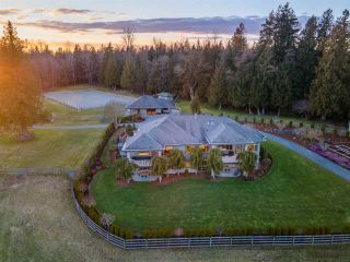 "Photo 5: 2675 256 Street in Langley: Otter District House for sale in ""FIRLEA ACRES"" : MLS®# R2557087"