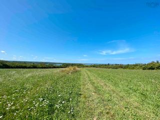 Photo 6: 11.6 acres East Tracadie Road in East Tracadie: 301-Antigonish Vacant Land for sale (Highland Region)  : MLS®# 202122282