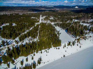 Photo 13: BERGMAN ROAD in Prince George: Miworth Land for sale (PG Rural West (Zone 77))  : MLS®# R2445807