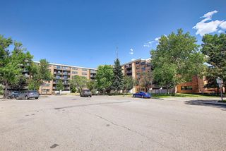 Photo 2: 104 30 Mchugh Court NE in Calgary: Mayland Heights Apartment for sale : MLS®# A1123350