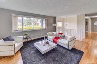 Photo 3: 4128 San Clemente Pl in VICTORIA: SE Gordon Head House for sale (Saanich East)  : MLS®# 783217