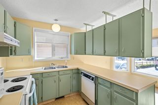 Photo 11: 207 Radcliffe Place SE in Calgary: Albert Park/Radisson Heights Detached for sale : MLS®# A1149087