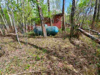 Photo 8: 26417 TWP RD 512: Rural Parkland County Rural Land/Vacant Lot for sale : MLS®# E4231473