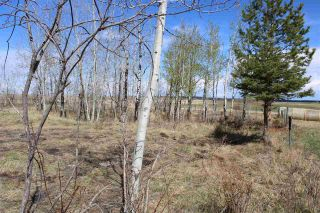 Photo 16: 57032 RR 50: Rural Lac Ste. Anne County Rural Land/Vacant Lot for sale : MLS®# E4244016