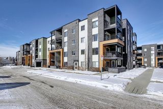 Photo 33: 1214 1317 27 Street SE in Calgary: Albert Park/Radisson Heights Apartment for sale : MLS®# A1070398