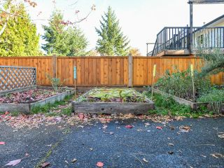 Photo 54: 2800 Windermere Ave in CUMBERLAND: CV Cumberland House for sale (Comox Valley)  : MLS®# 829726