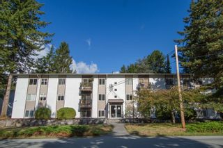 Main Photo: 44 38177 WESTWAY Avenue in Squamish: Valleycliffe Condo for sale : MLS®# R2619893