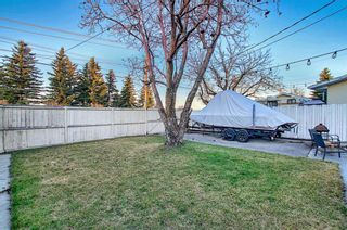 Photo 33: 52 Maple Court Crescent SE in Calgary: Maple Ridge Detached for sale : MLS®# A1092001